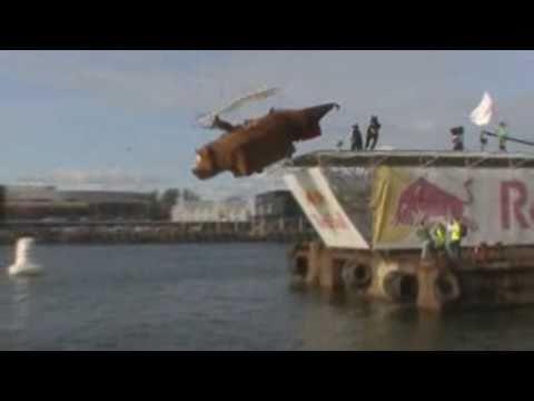"""Red Bull Lennupäev 2008: """"Ruhnu Karu"""" (III koht)"""