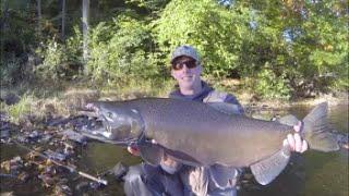 Salmon River Pulaski Ny Flyfishing Ii