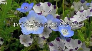 Rails-Tereo - 冷たい雨