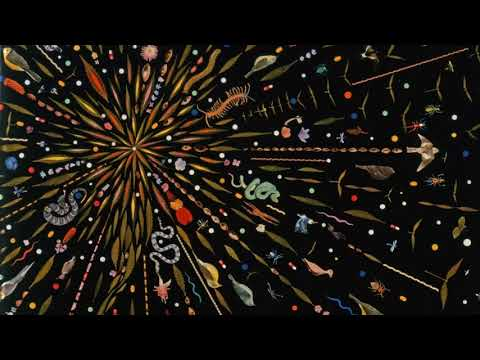 Hugh Ross talks Four Views on Creation, Evolution, and Intelligent Design (Part 1)