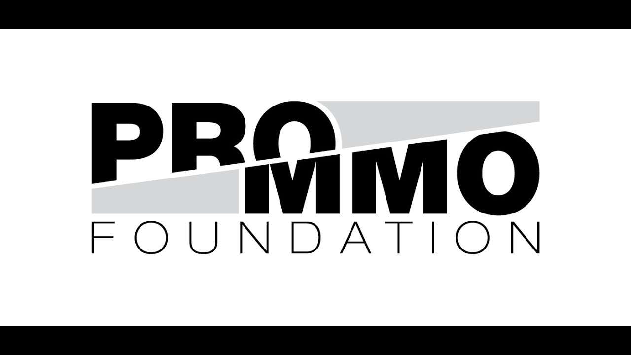 PRO/MMO Foundation  Free, open source, multiplayer tools