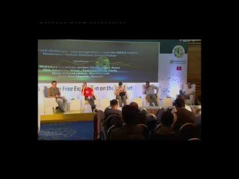 Freedom OnLine: Change and Challenges-User Perspectives from the MENA Region