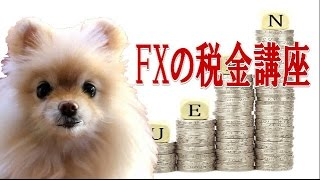 FXの税金、確定申告は必要?個人と法人、国内口座と海外口座、どう違うの? thumbnail