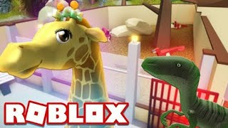 WE ARE SETTING UP A ZOO / Roblox Zoo Tycoon #1 / Roblox English