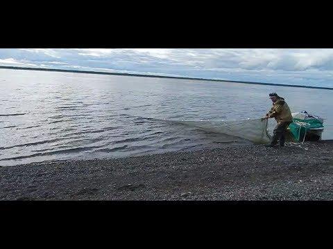Рыбалка неводом,есть БОНУС!!!