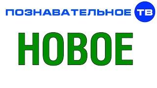 Новости на Познавательном ТВ (Артём Войтенков)