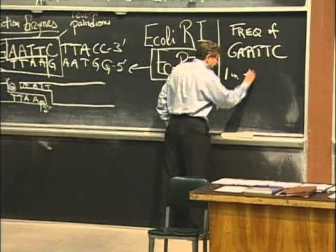 Basic Mechanisms of Cloning, excerpt 1 | MIT 7.01SC Fundamentals of Biology
