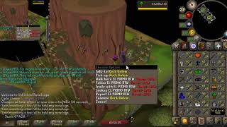 Will Warding be the First New Skill on OSRS?