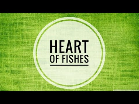Heart Of Fishes | Quick Review | Slideshow | Lagler | Biology Base.