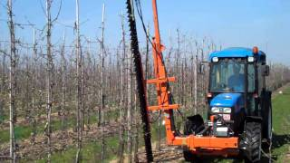 Mechanical Hedge Pruning at Carolus Trees, Belgium