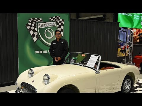 Results Wrap Up - 2019 Shannons Melbourne Summer Classic Auction