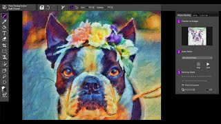 How to Auto-Paint and add effects using Painter Essentials 7
