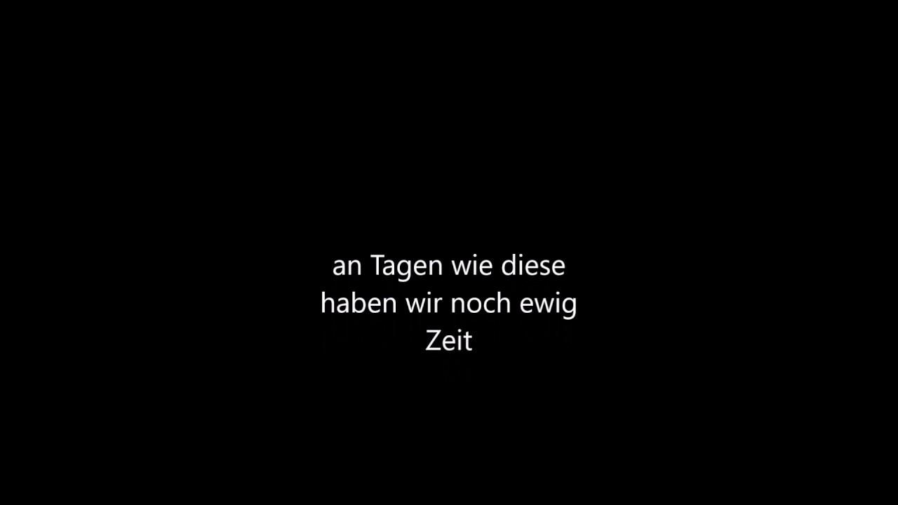 Karaoke Feiern Im Regen Video With Lyrics Die Toten Hosen