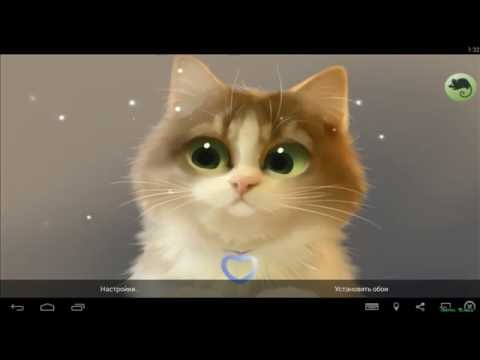 Tummy The Kitten┇Живые обои  Live Wallpaper (Android)