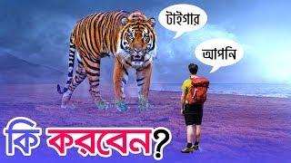 সিংহ/বাঘ আক্রমণ করলে কীভাবে বাঁচবেন? 🔵 How To Survive A Lion/Tiger Attack | In Bangla | FacTotal