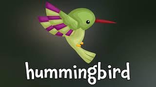 Birds! Learn about Birds