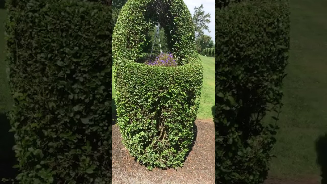this is rhode island green animals topiary garden - Green Animals Topiary Garden