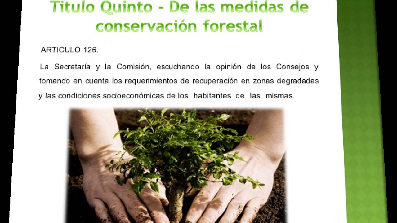 Ley general de Desarrollo Forestal Sustentable - YouTube