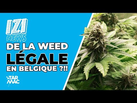 De La Weed Légale En Belgique ?!! / IZI NEWS