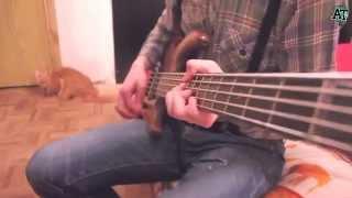 Александр Тихомиров - Песня девушке