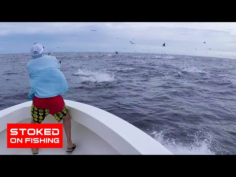 Panama Fishing, Tuna Everywhere! | Stoked On Fishing Full Episode | 2020