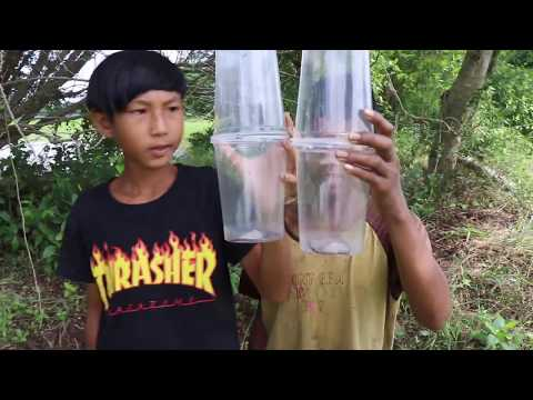 Awesome Ideas Eel Fish Trap With Glass Plastic - How To Make An Easy Fish And Eels By Glass Plastic