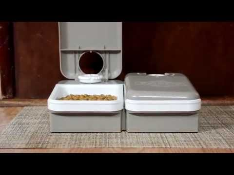 PetSafe® Eatwell Two Meal Feeder