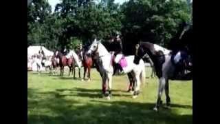 Regionalny konkurs skoków konnych Pszczyna 20.07.14