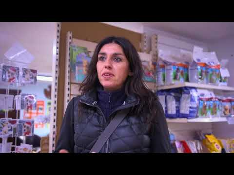 Short Documentary with farnham RSPCA and Hairy Hounz