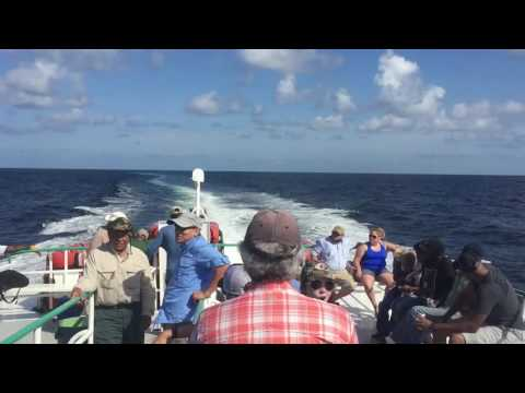 2016 Deep Sea Fishing Galveston - New Buccaneer