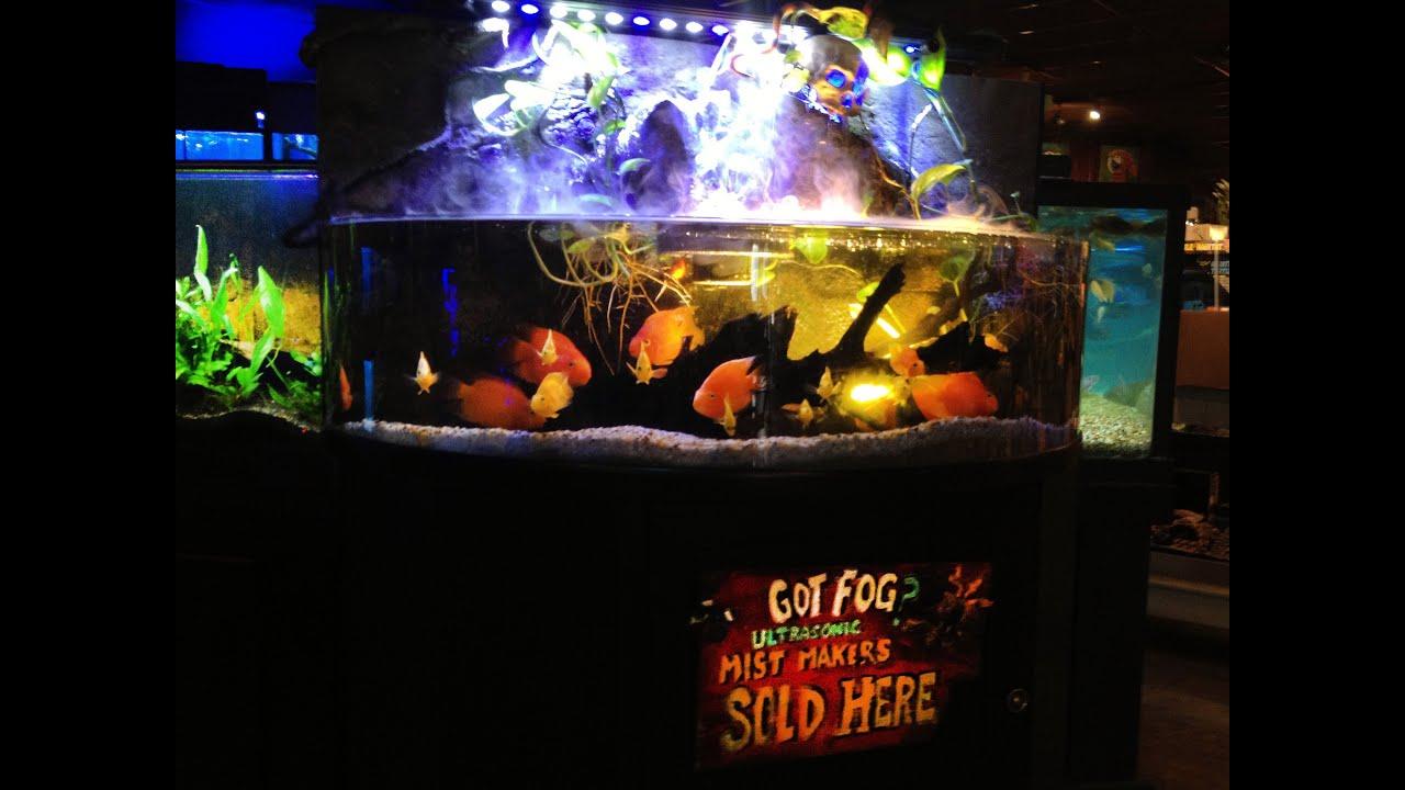 Aquarium fish tank mist maker -