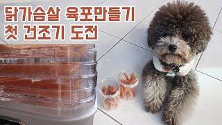 [수제간식] 닭가슴살 육포 만들기