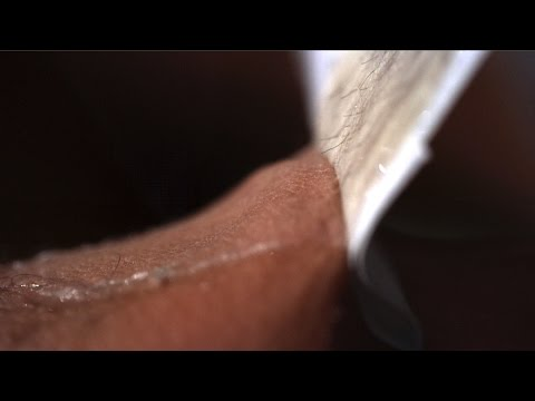 Download Youtube: Leg Waxing at 28,000fps - The Slow Mo Guys
