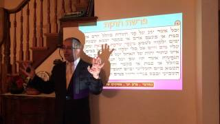 הרב ינון קלזאן - פרשת חוקת - פרה אדומה