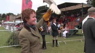 Falconry: Our Intangible Cultural Heritage
