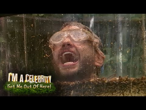 Bushtucker Trial: Knickerbocker Gory | I'm A Celebrity...Get Me Out of Here!