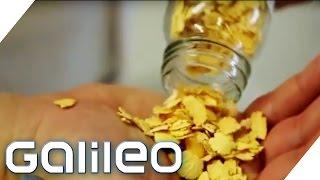 Milch ohne Kuh? | Galileo | ProSieben