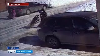 В Уфе на детей напала собака