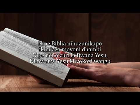 NIPE BIBLIA By Msanii Records Chorale