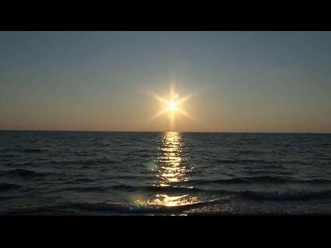 Marriage Proposal Video   Naples, FL