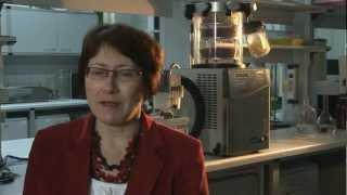 GMO   Rozmowa z prof  dr hab  Ewą Rembiałkowską