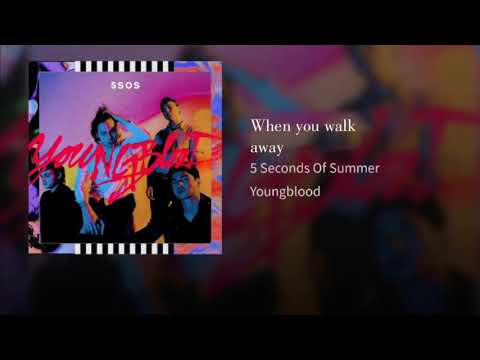5 Seconds Of Summer- When You Walk Away (Target Audio)