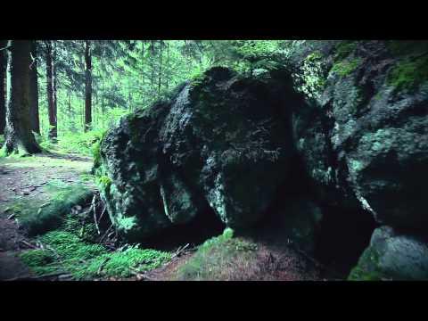 Vogtland |Glidecam 2000 Pro