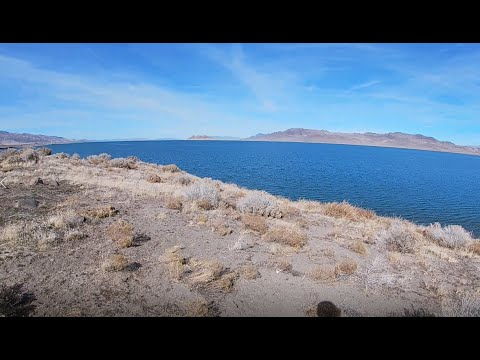 First Time Fly Fishing!!! Pyramid Lake NV!