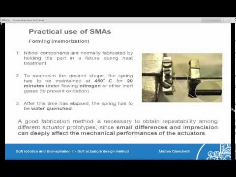 ShanghAI Lectures 2013 - Lecture 6 - Soft Robotics and Bioinspiration II