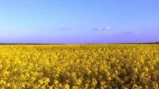 ТІК - Люби ти Україну!/ПРЕМ