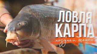 Ловля карпа поздней осенью | Рыбалка в ноябре | Прикормка и насадки по холодной воде