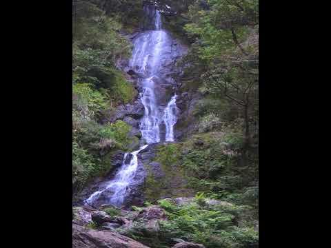 奄美大島フナンギョの滝