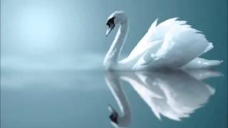 Мелодия Белого Лебедя thumbnail