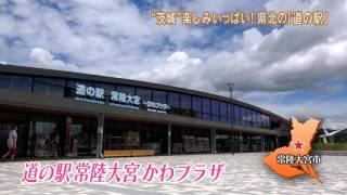 今回の「磯山さやかの旬刊!いばらき」では,磯山さやかさんが「県北道...